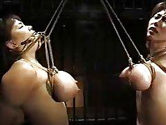 japanese breast bondage