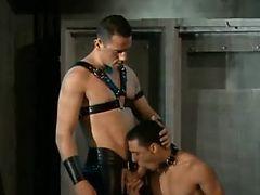 gay sex slave